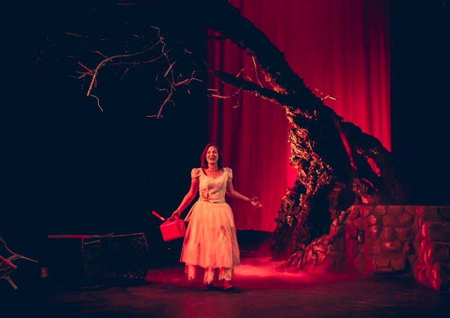 Anti-heroine Hester Swane (Grace Bolander) channels the murderous Medea in Irish playwright Marina Carr's By the Bog of Cats (1998).