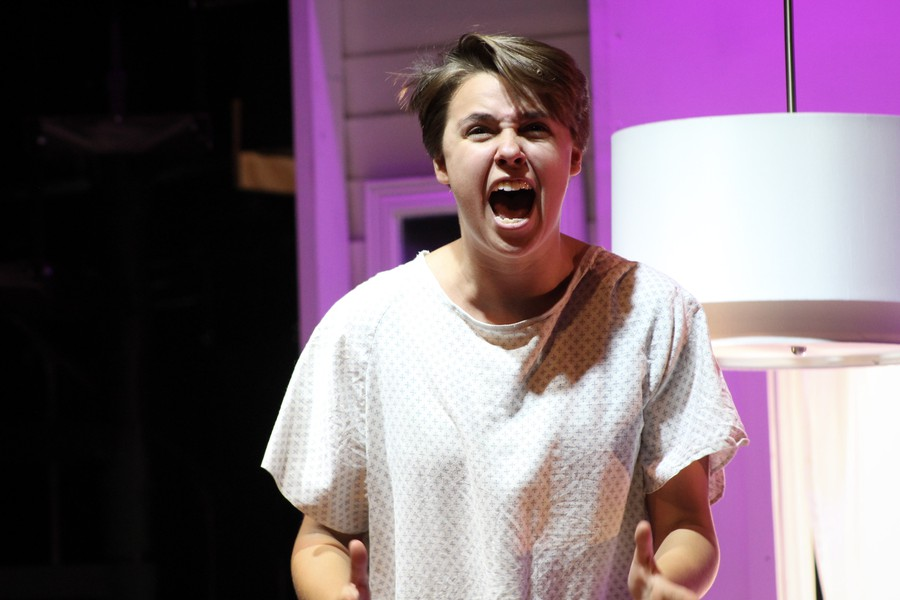 Kate Connors plays Diana Goodman in Next to Normal
