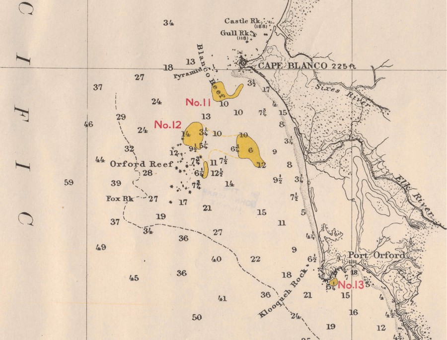 The University of Chicago Library digitized maps over a century old that documented kelp forest populations.