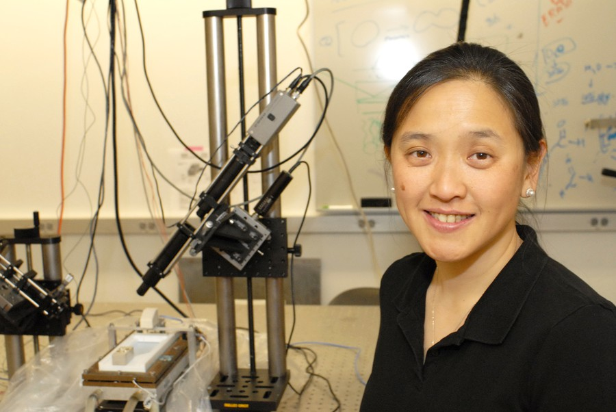 Ka Yee C. Lee will leave her position in the laboratory to become the University's new provost.