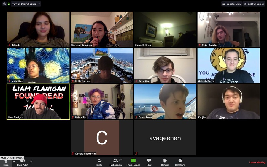 Writers convene for a Zoom meeting during Radio[24].