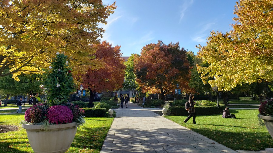 The main quadrangle during the fall.