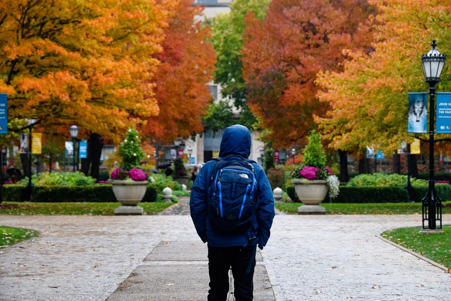 """Blue Can be a Fall Color Too:"" Student clad in blue walks through the main quad on a rainy Fall day."