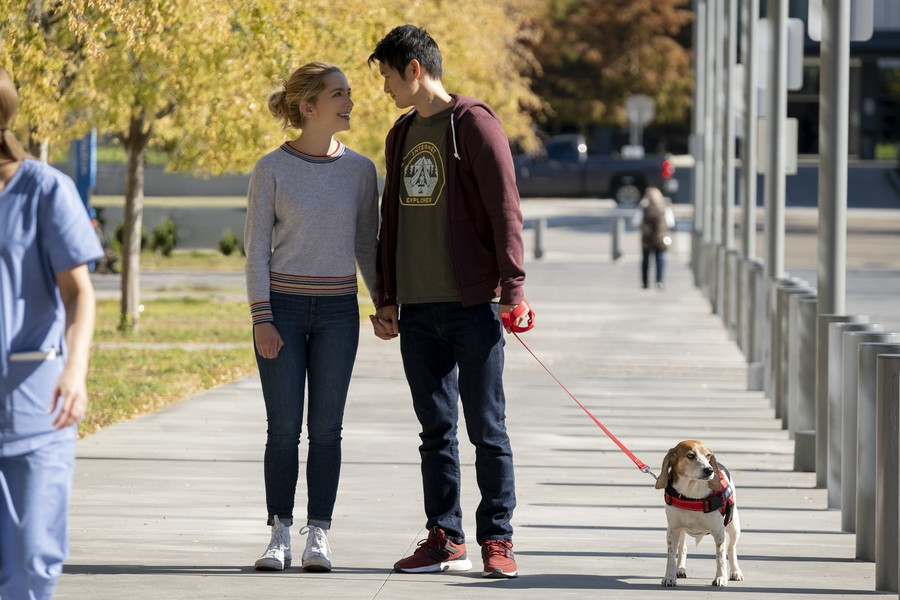 "Jennifer Carter (Jessica Rothe) and Solomon Chau (Harry Shum Jr.) enjoy a sunny walk with their dog in ""All My Life""."