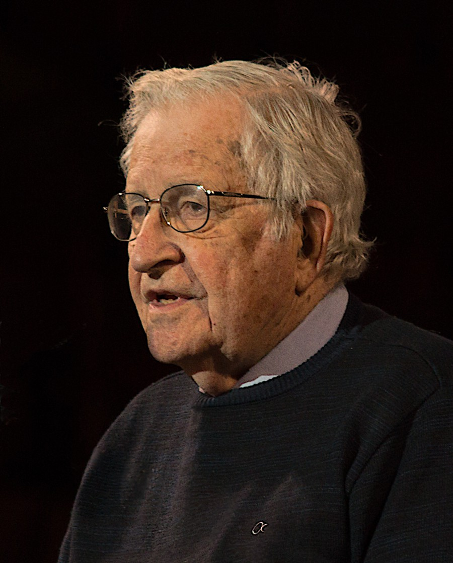 """""""Like it or not, your generation has to decide whether organized human society is going to persist or not,"""" Noam Chomsky told a virtual audience of students."""